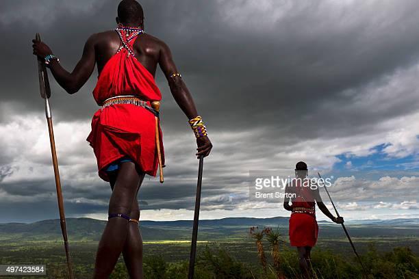 Olderekesi community group Maasai men walk across a hillside overlooking some of their tradional land Olderrekesi Ranch Maasai Mara Kenya February 19...