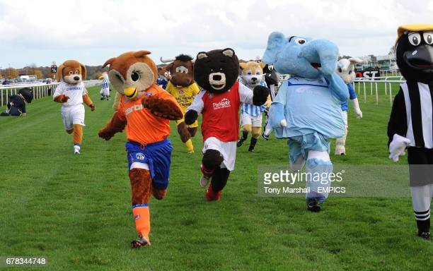 Oldham Athletic AFC's Chaddy Owl Rotherham Utd's Miller Bear and Coventry City FC's Sky Blue Sam in action during the Football League Mascot Race in...