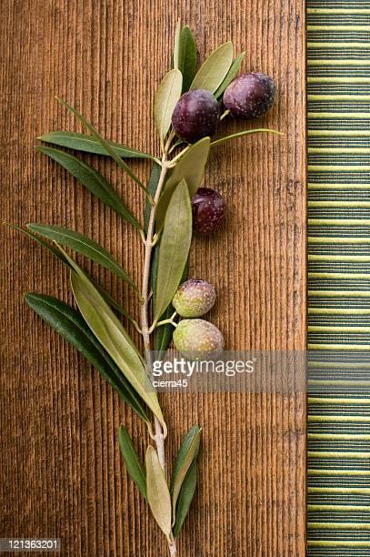 Olive Branch Stillleben