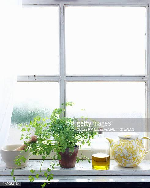 Olive oil and herbs on windowsill