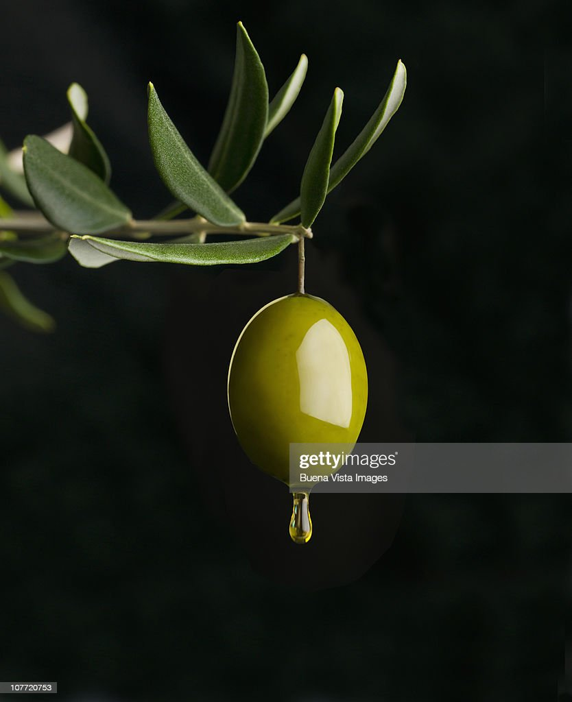Olive with olive oil : Stock Photo