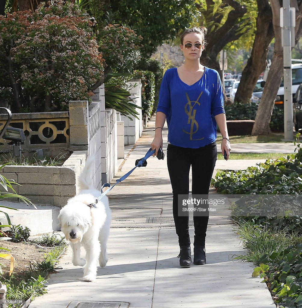 <a gi-track='captionPersonalityLinkClicked' href=/galleries/search?phrase=Olivia+Wilde&family=editorial&specificpeople=235399 ng-click='$event.stopPropagation()'>Olivia Wilde</a> is seen on February 20, 2014 in Los Angeles, California.