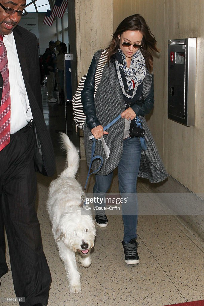 Olivia Wilde seen at LAX airport on March 04, 2014 in Los Angeles, California.