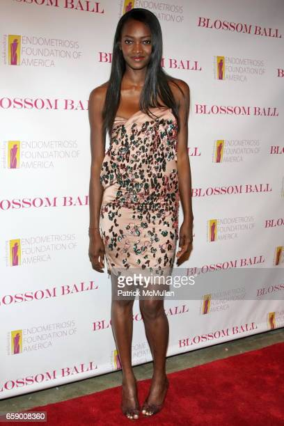 Oluchi Onweagba attends The BLOSSOM BALL To Benefit The Endometriosis Foundation of America at The Prince George Ballroom on April 20 2009 in New...