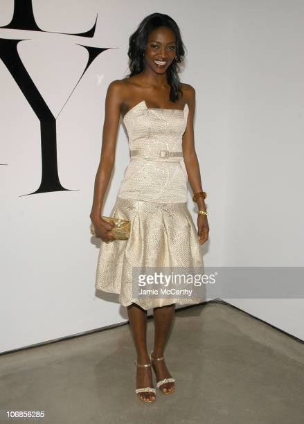 Oluchi Onweagba during Victoria's Secret 'Sexy Volume 3 A Tribute to a Decade of Sexy Swimwear' After Party in New York City at Milk Studios in New...