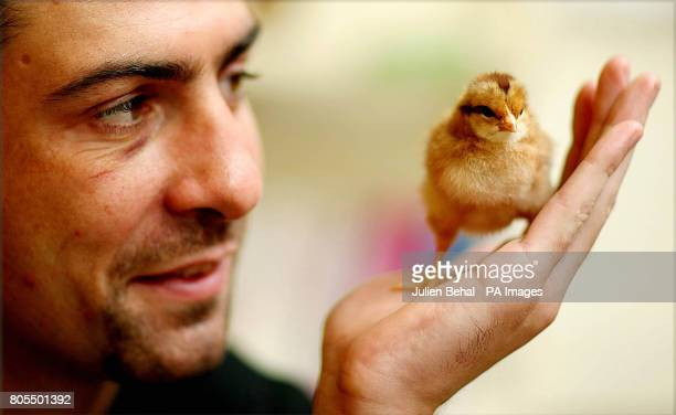 Olympic Silver medalist Ken Egan holds a new chick in the Oxfam Store in Dublin at a photocall to launch Oxfam Unwrapped Oxfam's fun and funky...