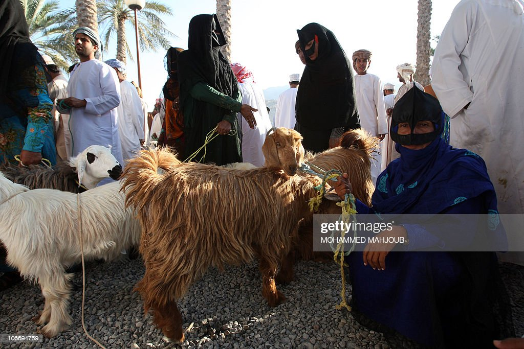 Omani women wearing traditional bedouin masks wait for customers to buy their sheep at a morning market in Nizwa 140 kilometers north of the capital...