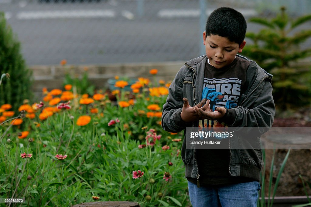 Omar Meneiburo looks at a Ladybug on his hand at the Octopus Garden on Tuesday March 22 2011 in San Diego CA Gardening has become a popular activity...