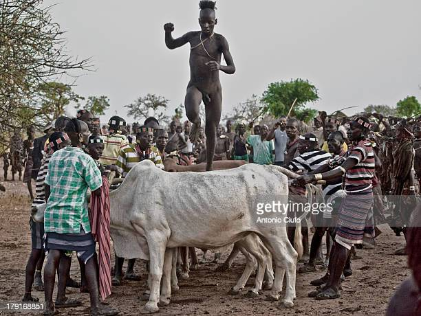 CONTENT] Omo Valley Ethiopia The Hamer are a tribal people in southwestern Ethiopia They live in Hamer Bena woreda a fertile part of the Omo River...