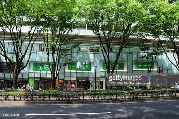 Omotesando street, Shibuya Ward, Tokyo Prefecture, Japan