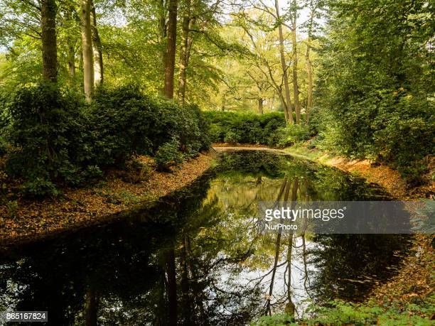 On 22 October 2017 in The Netherlands during the season the landscape is flooded with green ochre golden and reddish colours Also because the summer...