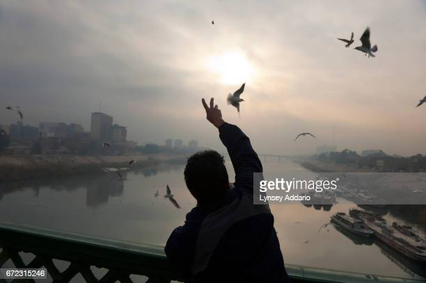 On a bridge over the Tigris a man feeds gulls at dawn as water taxis await the morning's first passengers