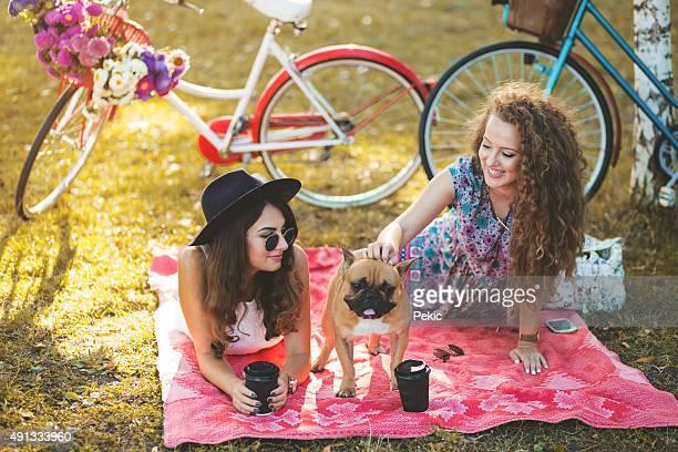 Auf Picknick mit meinem Hund und bestie