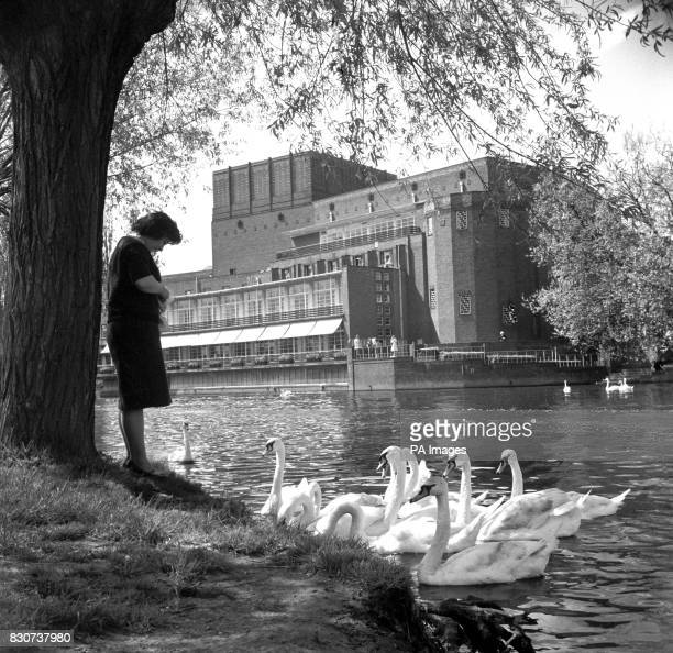 On the banks of the River Avon on the far side of the river stands the Shakespreare Theatre formerly the Shakespeare Memorial Theatre opened in 1932...