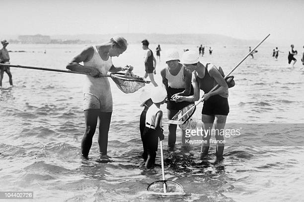 On the beach of Deauville in July 1929 children fished for shrimp with the help of a shrimping net