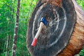 A hatchet is thrown into a log target. It hits the centre mark, making it a perfect throw.