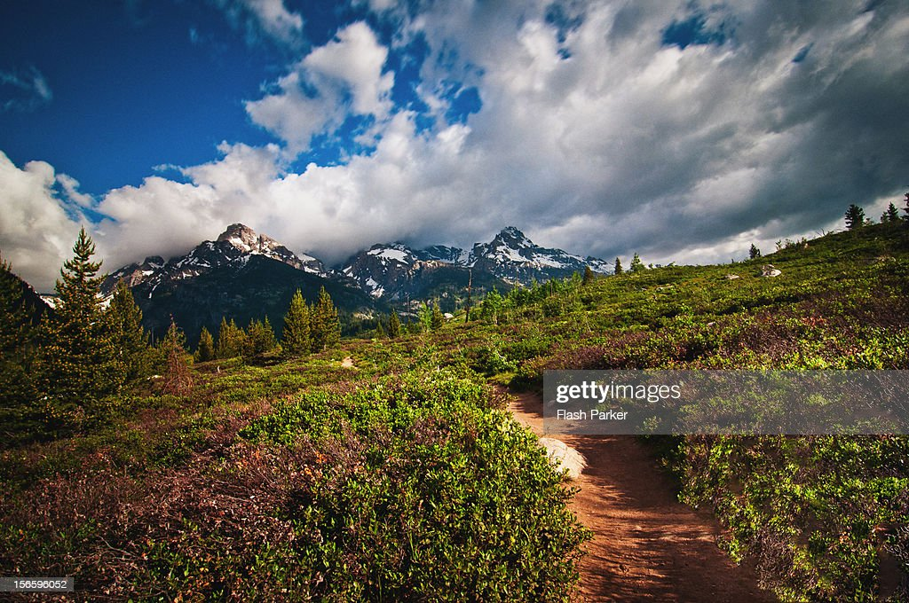 On the Mountain Trail : Stock Photo