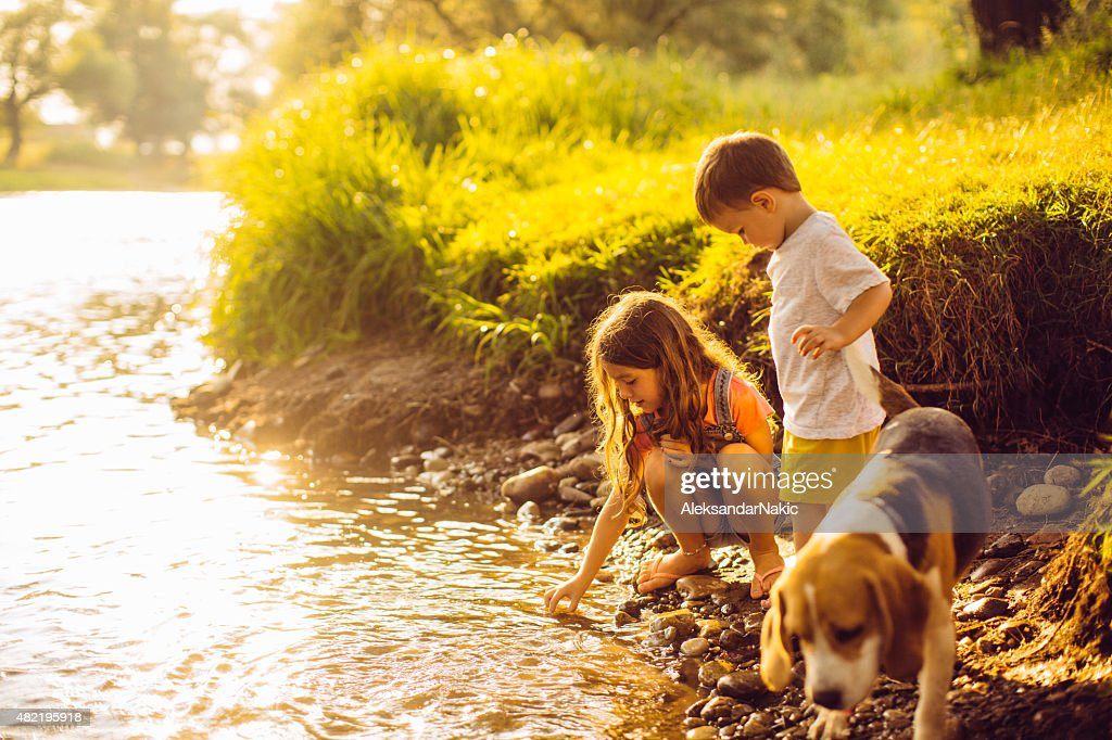 On the riverbank : Stock Photo