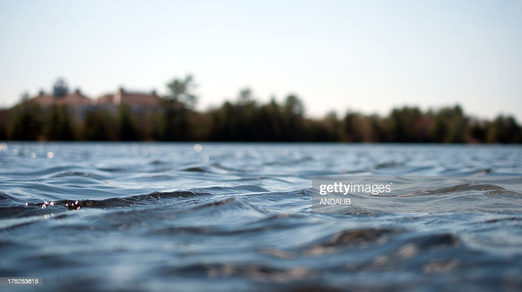On the surface of the lake : Stock Photo