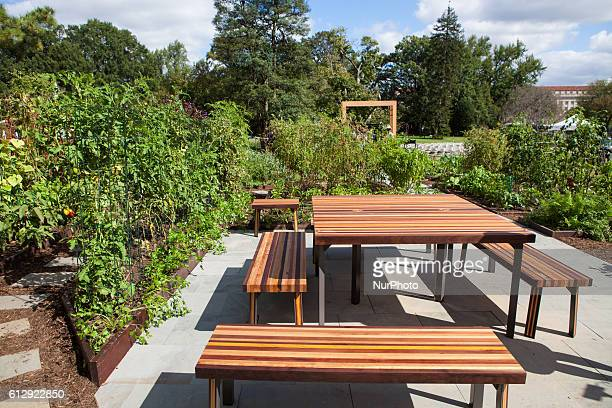 On Wednesday 5th October 2016 in Washington DC the United States in the White House Kitchen Garden on the South Lawn of the White House University of...