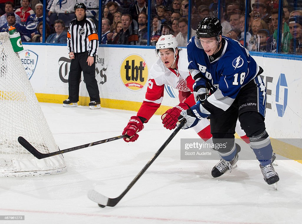 Ondrej Palat #18 of the Tampa Bay Lightning controls the puck against Danny DeKeyser #65 of the Detroit Red Wings during the third period at the Tampa Bay Times Forum on February 8, 2014 in Tampa, Florida.