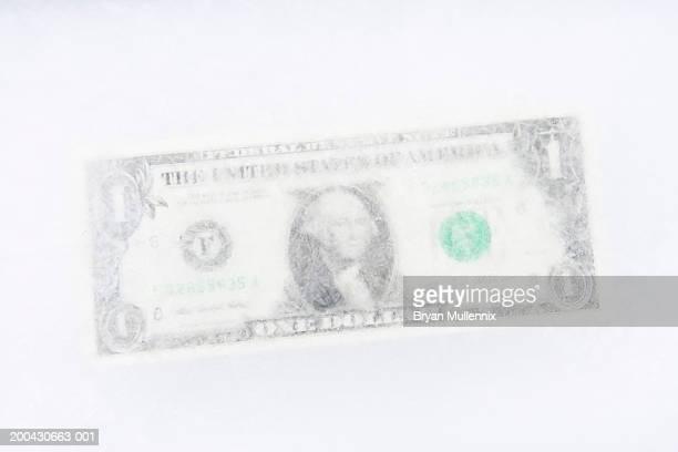 US one dollar bill frozen in block of ice