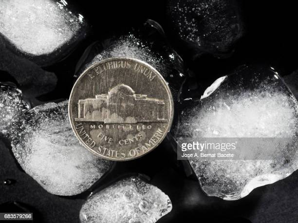 One dollar coin next to pieces of ice on a black background, concept on the monetary crisis of the United States of America