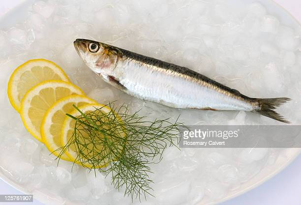 One freshly caught sardine with lemon and fennel.