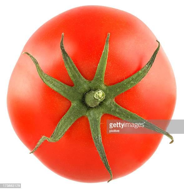 Isolé de tomate