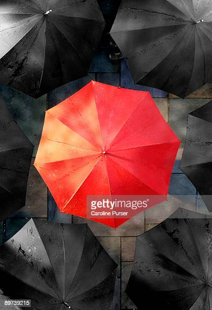One red umbrella with black umbrellas around it