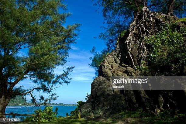 One Tree Hill, Papeete, Tahiti