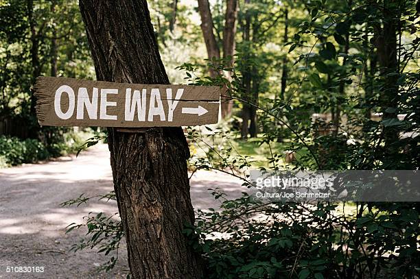 One way sign in campsite, Phoenicia, NY, USA