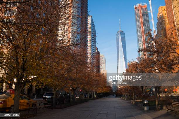 One World Trade Center, which is behind the rows of autumn color trees promenade at Lower Manhattan New York.