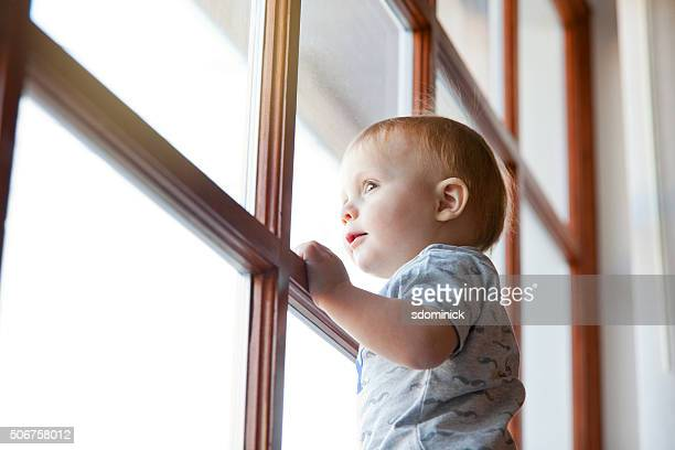 One Year Old Baby Boy Looking Out Window