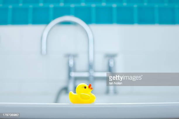 One yellow rubber duck for bathtime