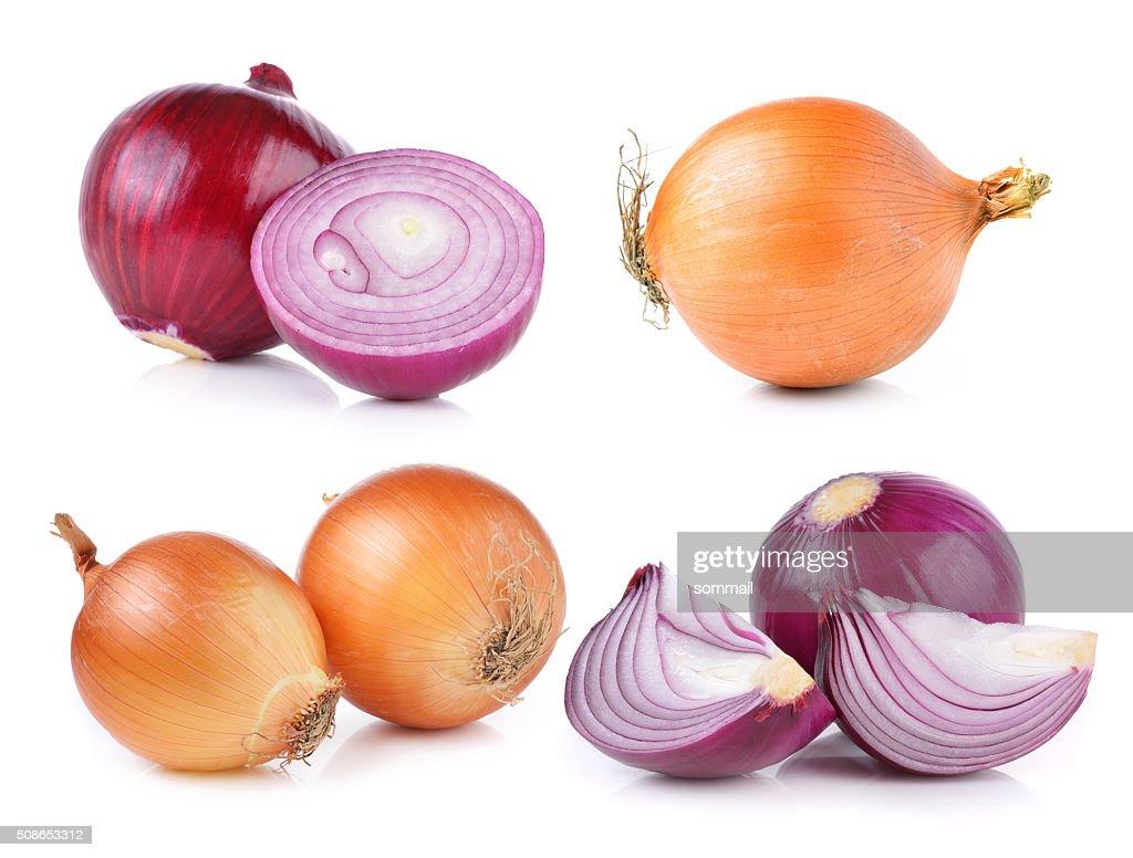onion on white background : Stock Photo