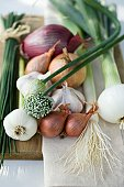 Onions, chives and garlic chives