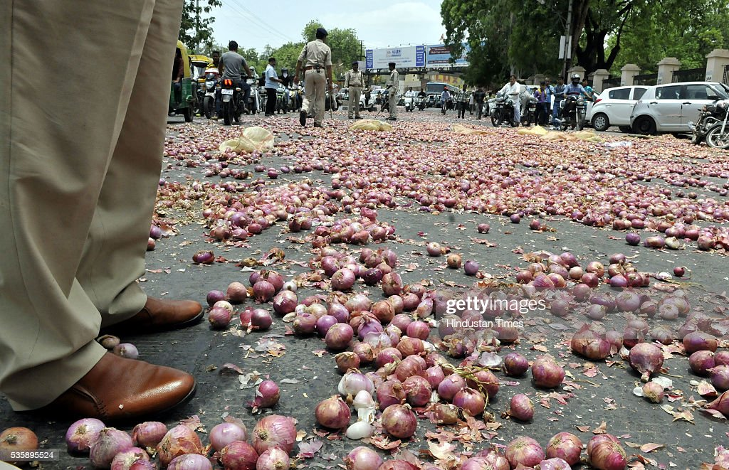 Onions that were thrown in front of Collectorate by farmers from Bijalpur and Rau as part of their protest on May 30, 2016 in Indore, India. A bumper crop in Maharashtra and Madhya Pradesh has meant that prices have hit rock bottom. For farmers in the state, already struggling with a severe water shortage, it is a nightmare compounded.