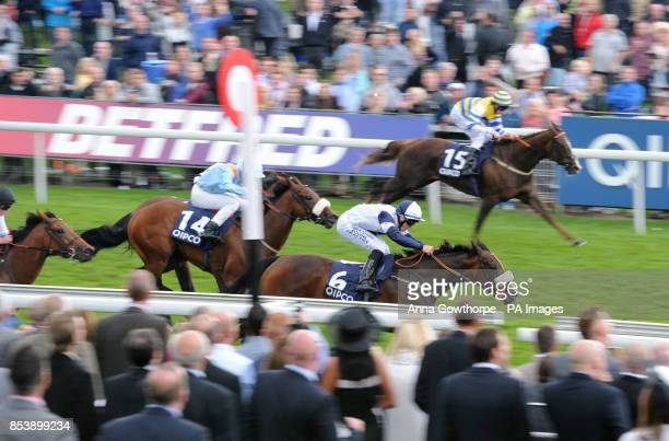 Online Alexander ridden by Kevin Stott wins the QIPCO Future Stars Apprentice Stakes during Day Four of the 2014 Welcome To Yorkshire Ebor Festival...