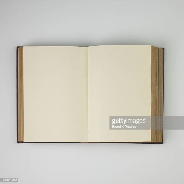 Open antique book with blank pages