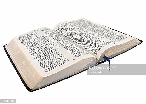 Open Bible (KJV)