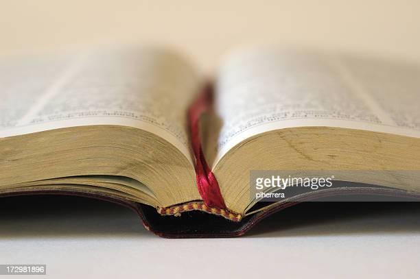 Aprire la Bibbia