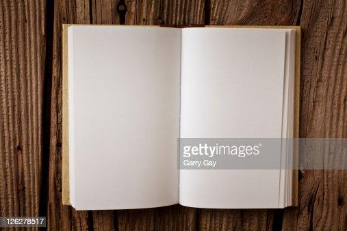 Open blank book : Foto de stock
