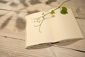 Open blank note pad and vine