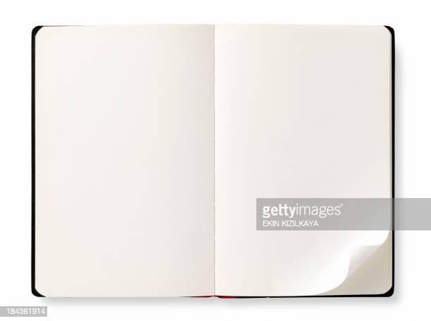 Livro aberto com páginas em branco