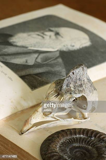 Open Charles Darwin book with guinea-fowl skull and ammonite