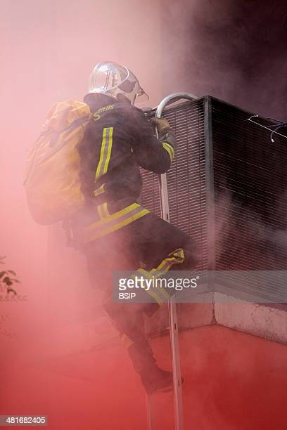 BSIP/UIG via Getty Images