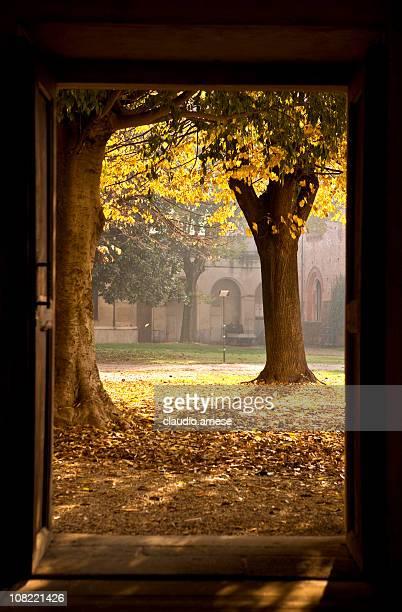 Open Door. Color Image