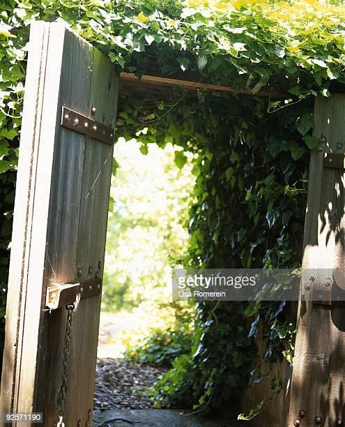 Open door to garden with ivy on arbor