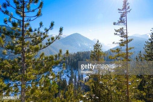 open door with  view  green meadow illuminated by bright suns : Stock Photo